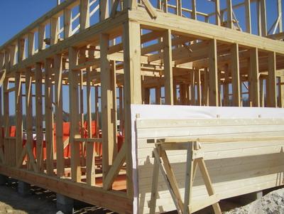 Наиболее простая технология возведение экологичной и экономичной конструкции это каркасный дом